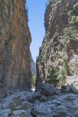 stock photo of samaria  - Samaria gorge at Crete island in Greece - JPG