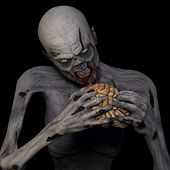 picture of undead  - Zombie Eating Brain - JPG