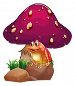 image of orange poison frog  - Illustration of a frog below the giant mushroom on a white background - JPG