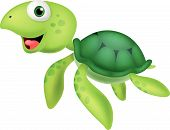picture of green turtle  - Vector illustration of Cute sea turtle cartoon - JPG
