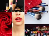 Collage of cosmetics for professional make-up pic.