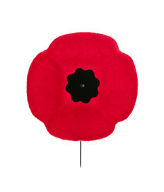 picture of lapel  - Red poppy lapel pin for Remembrance Day - JPG