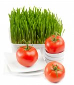 Healthy Food - Fresh Tomato And Germinated Wheat Seeds On The White Background