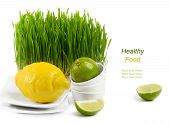Healthy Food - Fresh Citrus And Germinated Wheat Seeds On The White Background
