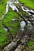 stock photo of boggy  - wheel ruts in paddock with puddles of water - JPG