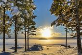 foto of nordic skiing  - Beautiful winter picture from Sweden over a lake with pine trees in the foreground - JPG