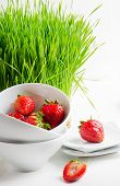 Healthy Food - Fresh Strawberries And Germinated Wheat Seeds