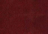 picture of crocodilian  - Dark red color colour crocodile skin texture background  - JPG