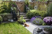 stock photo of garden sculpture  - Small patio garden with a dachshund dog lying in the sun - JPG