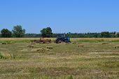 stock photo of dry grass  - dry - JPG