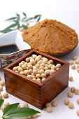 picture of soybeans  - Japaneese traditional soybean processed foods Miso - JPG