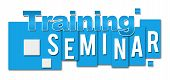 picture of seminars  - Training seminar text written over blue squares background - JPG
