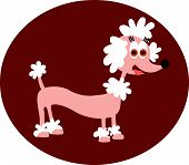 pic of poodle  - Vector illustrated cartoon pink Poodle in dark red circle - JPG