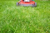 foto of grass-cutter  - Lawn mower cutting green grass in backyard - JPG