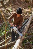 pic of man chainsaw  - Senior caucasian man woodcutter cutting down trees with chainsaw - JPG