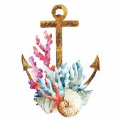 stock photo of anchor  - Beautiful vector image with nice watercolor anchor with corals - JPG