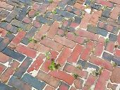 foto of pavestone  - detail of a cobble brick road - JPG