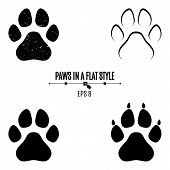 canine poster