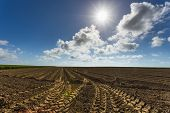 Plowed Agricultural Fields In Normandy, France. Countryside Landscape. Environment Friendly Farming poster