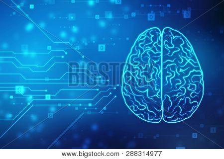 Human Brain 2d Illustration Digital
