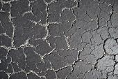 Old Road Background - Surface Of Grey Cracked Asphalt Texture Close Up, City Street Of Miami. Black  poster