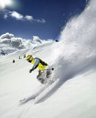 stock photo of winter sport  - The Skier - JPG