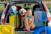 stock photo of dog clothes  - Vacation - JPG