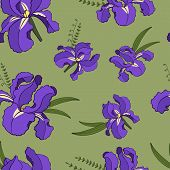 Vector Seamless Pattern Of Hand Drawn Sketch Iris Flowers. Endless Botany Texture For Fabrics, Texti poster