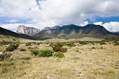 picture of guadalupe  - Guadalupe Mountains National Park in Texas USA - JPG