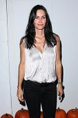 LOS ANGELES - OCT 27:  Courteney Cox arrives at EBMRF And PlayStation Epic Halloween Bash at Private