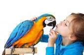 stock photo of tame  - Portrait of a kid girl with her domestic ara parrot - JPG