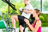 pic of suspension  - Group of people exercising with suspension trainer in fitness club or gym - JPG