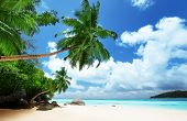 stock photo of bay leaf  - beach on Mahe island in Seychelles - JPG