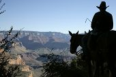 picture of grand canyon  - Silhouette of a mule rider about to descend into the Grand Canyon - JPG