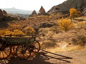 image of wild turkey  - Abandoned wild west wagon in desolated Cappadocia - JPG