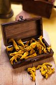 image of rhizomes  - Rhizome of turmeric in a wooden box - JPG