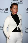 LOS ANGELES - JAN 17:  Penny Johnson Jerald at the Disney-ABC Television Group 2014 Winter Press Tou