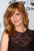 LOS ANGELES - JAN 17:  Kelly Reilly at the Disney-ABC Television Group 2014 Winter Press Tour Party