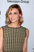 LOS ANGELES - JAN 17:  Samaire Armstrong at the Disney-ABC Television Group 2014 Winter Press Tour P