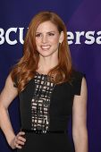 LOS ANGELES - JAN 19:  Sarah Rafferty at the NBC TCA Winter 2014 Press Tour at Langham Huntington Ho