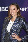 LOS ANGELES - JAN 19:  Jessica McNamee at the NBC TCA Winter 2014 Press Tour at Langham Huntington H