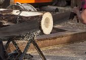 foto of sawing  - Man sawing log with a two hands saw - JPG