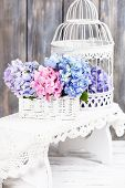 stock photo of hydrangea  - Hydrangea flowers in the white basket - JPG