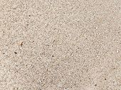 stock photo of sand gravel  - fine sand interspersed with fragments of shells and from the fine fraction of pink granite - JPG