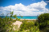 image of wild adventure  - wild coast of Sardinia in south Italy - JPG