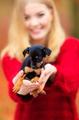 foto of petting  - Pets and people pet adoption - JPG