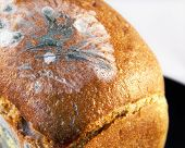 foto of crust  - Crust and crumb of bread - JPG