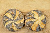 stock photo of bap  - close up of two poppy seed rolls on greaseproof paper - JPG