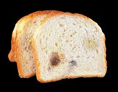 image of crust  - Crust and crumb of bread - JPG