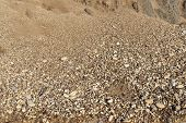 pic of sand gravel  - Small gravel stones texture background - JPG